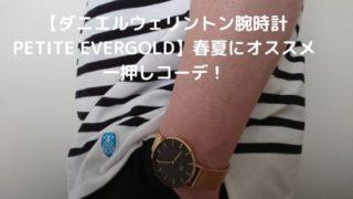 【ダニエルウェリントン腕時計PETITE EVERGOLD】春夏にオススメ一押しコーデ!