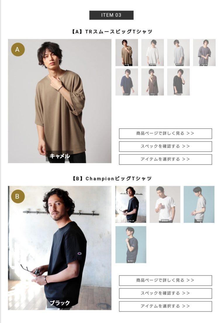 スタイルアップ便 ③ TRスムースビッグTシャツorChampionビッグTシャツ